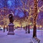 RT @earthposts: Christmas in New York Central Park http://t.co/bw33rMtaMt
