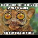 RT @9GAG: I can see noises. #Morning http://t.co/qnejtKvZzm