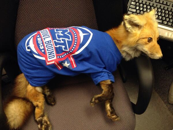 Oh yes--Floyd has his bowl shirt on and is ready for Ft Worth http://t.co/eOYeVrFqGl