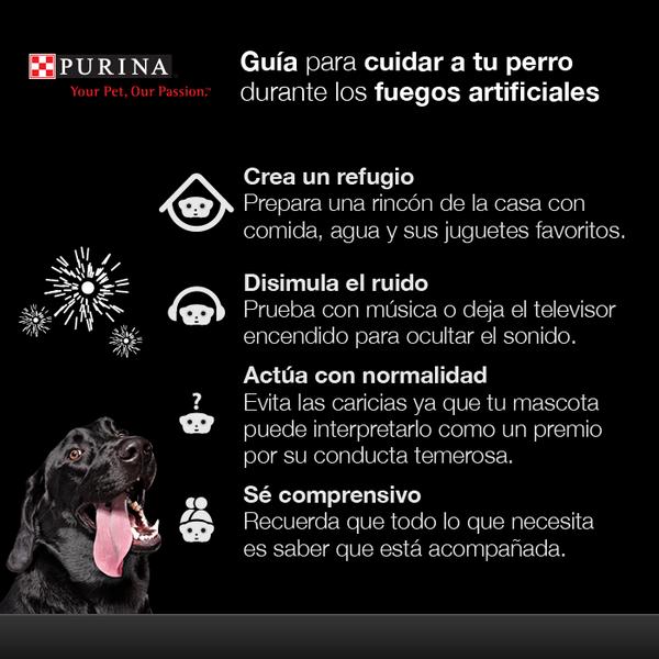 Sabemos cómo sufren nuestras mascotas por los fuegos artificiales. Sigue estos consejos para cuidarla del ruido: http://t.co/WX6YSiXCPO