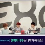 RT @soompi: Watch EXO Host their Own Five Minute Radio #kpop http://t.co/6LB6vpN9v1 http://t.co/SR1C5Di9uG
