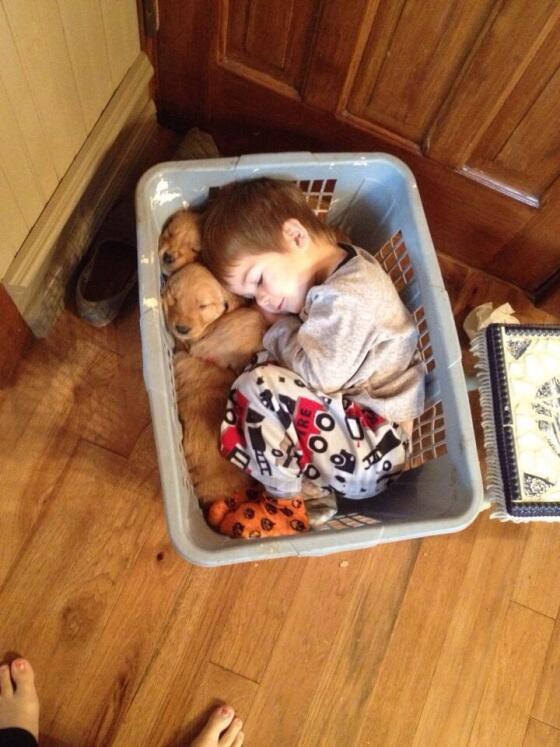 CO Laundry Tips: Remember to separate puppies and toddlers before washing. Both tend to run like crazy! http://t.co/udwwI3kxiI
