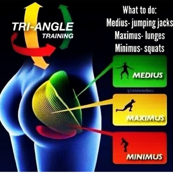 Fitness Tip80 There Are 3 Major Muscles In Your Butt U Need To Build To Get That Onion Booty Here Is Your Guide Scoopnest Com