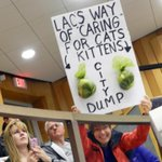 CAPS committee will address animal welfare services, draws crowd of 80-100 people. Many with signs. @LCNews1 #LdnOnt http://t.co/Hfr5d07AFo