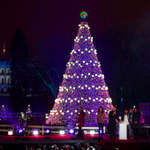 Watch highlights of the National Christmas Tree lighting with the First Family: http://t.co/8Qabrp4780 #WHHoliday