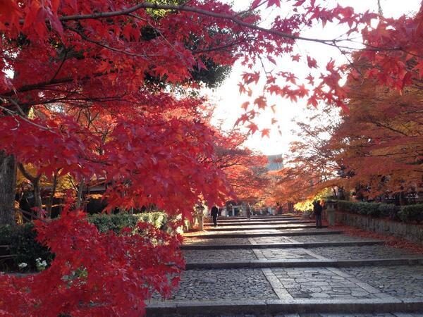Shinnyo-do temple(真如堂) #Kyoto #Japan http://t.co/Nf4reokbCX
