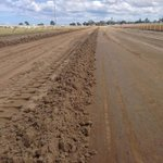 Sand track Reno @GeelongRaceClub well and truly underway! New and improved surface for our horses! #exciting  #grc http://t.co/iSEbE5tmXg