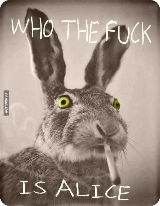 @9GAG: God damn it... Who is Alice?