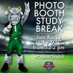 #CapitalOneBull. Almost time for that study break! Head to @USF_MSC to take a photo with Rocky! http://t.co/r5REPvv1KR