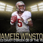 RT @FSU_Football: We see you, Jameis Winston! 2013 Davey O'Brien Award winner for nation's best quarterback! #Noles http://t.co/tF8dz8sWIW