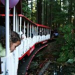 RT @Canadacarrental: 5. #Vancouver, head to Stanley Park to ride the miniature train through more than one million http://t.co/UjBvdGunMG