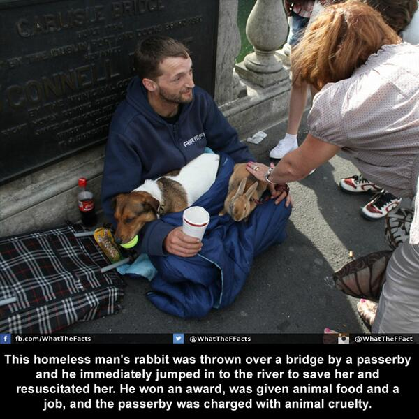 RT @WhatTheFFacts: A homeless man's love for his rabbit....! (Instagram: WhatTheFFact) http://t.co/Nxc0NOMTy4