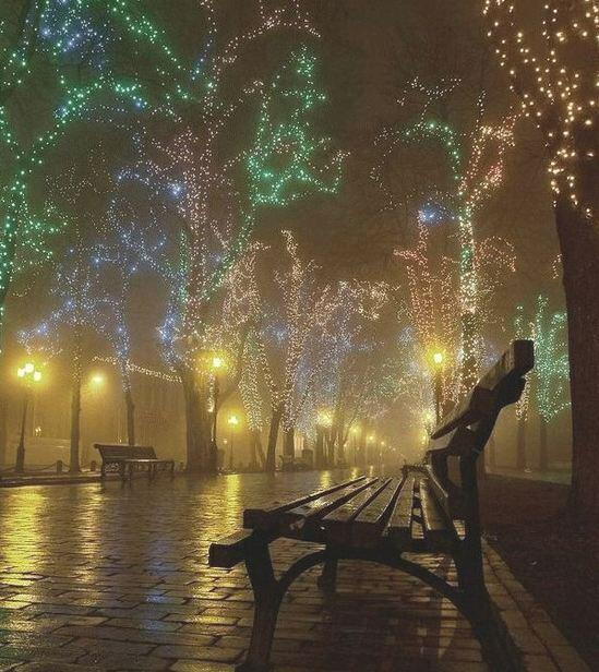 Christmas lights on a foggy night in Odessa, Ukraine http://t.co/pmPH3NZGdm