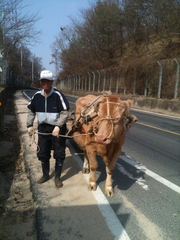 """""""기름값 없어도 됩니더~"""" 경북 예천군 호명면에서 찍은 사진. http://t.co/mvQRqKY3VN"""