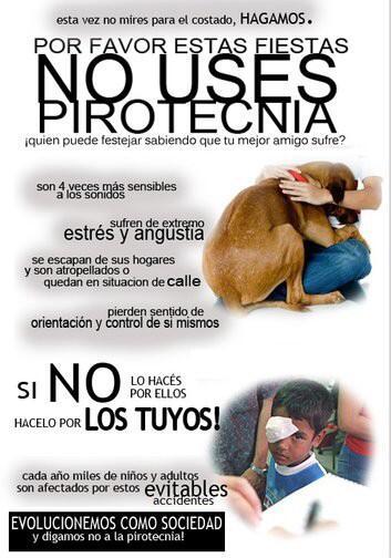 Diego Brancatelli (@diegobranca): En estas Fiestas decile NO A LA PIROTECNIA !!!!! Por los perros, por vos,x todos. No malgastes tu dinero. Dale??? RT http://t.co/oqpaJE53Bl