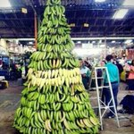 "RT @GichuruJamal: ""@Wiizhkid: Haha RT @BonifaceGitz: LOL, STOP ""@Its_Jaymo : Haha KISII-MAS tree now endorsed http://t.co/T6P99BSWxg"""" ooooh maaammmah! :-"