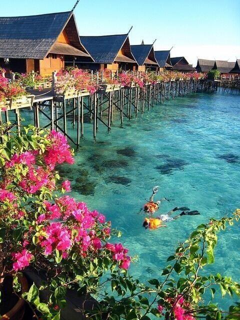 RT @ThatsEarth: Tahiti http://t.co/SS1SSSey7h