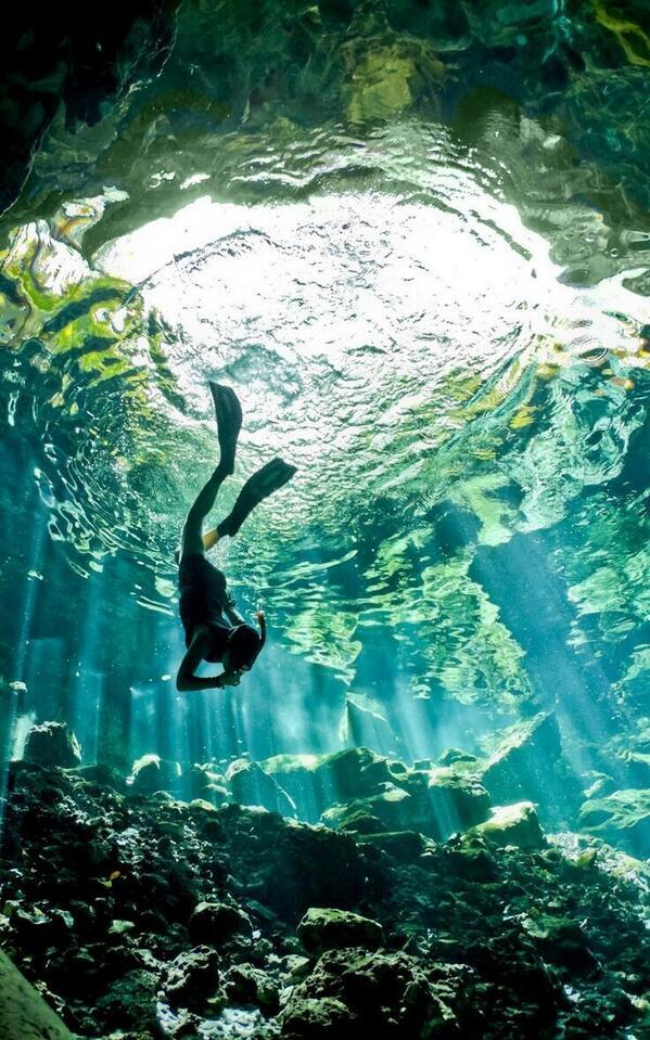 Cenote diving, Yucatan, Mexico http://t.co/8bCahdSmnH