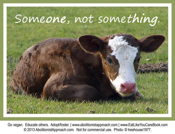Some*one*, not some*thing*.  Go #vegan. Educate others. #Adopt/foster. http://t.co/UufMDqBesc http://t.co/oVtRgX4irZ