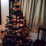 My Christmas Tree! http://t.co/Q07eBCCTZr