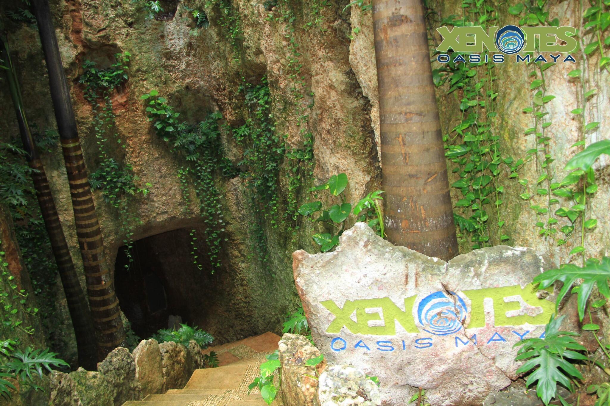 Los cenotes eran entradas al inframundo para los mayas. ¿Has estado en un cenote de tipo caverna? #OasisMaya http://t.co/BKgTgK4C7b