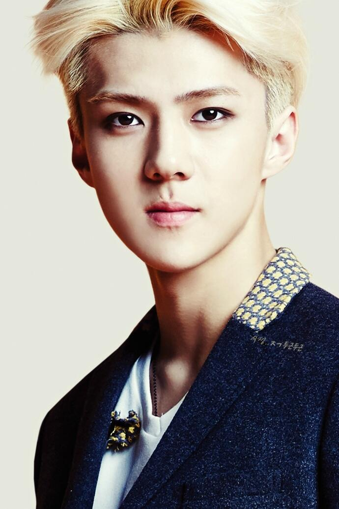 Appreciation Oh Sehun's blonde hair - Celebrity Photos ...