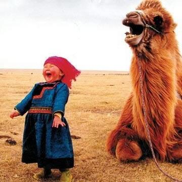 It's Sunday night. Best photo EVER! http://t.co/XExlcOtiYF