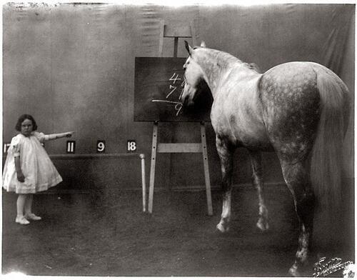 Girl with a smart horse, 1909 http://t.co/TSt591ZWHs