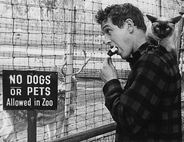 No Dogs Or Pets Allowed http://t.co/MVnF6cKMfe