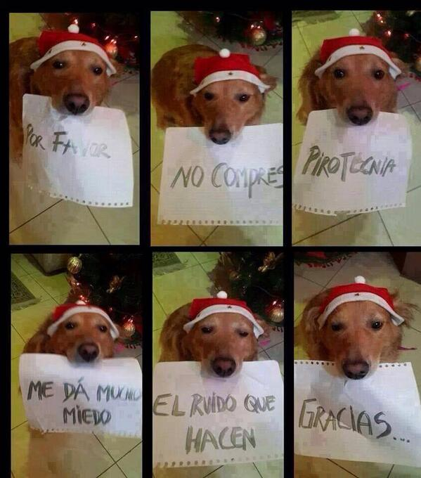 Si Ud. quiere a los animales difunda: http://t.co/0Zz526OqpK