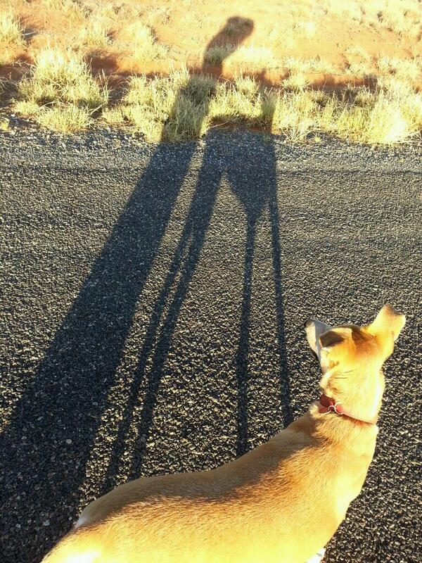 RT @RedFiddler: Morning dog walk pic: me and my shadow http://t.co/zj2HQLeWXK