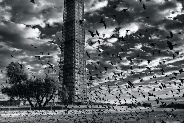 Stunning photo from Craig Hudson in DC Magazine http://t.co/FYTGSiEybd