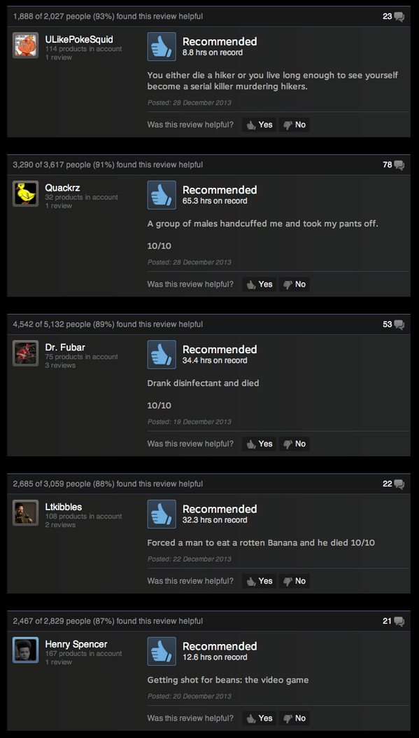 DayZ is clearly GOTY already, I'm calling it based solely on these helpful Steam reviews: http://t.co/TwHsHFCJLx