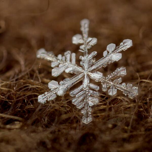 大分良くなってきた。やはり−5℃以下になると結晶がしっかりしてくる。 1月3日20:50ごろの気温は−8℃ http://t.co/TPRf56xc8j