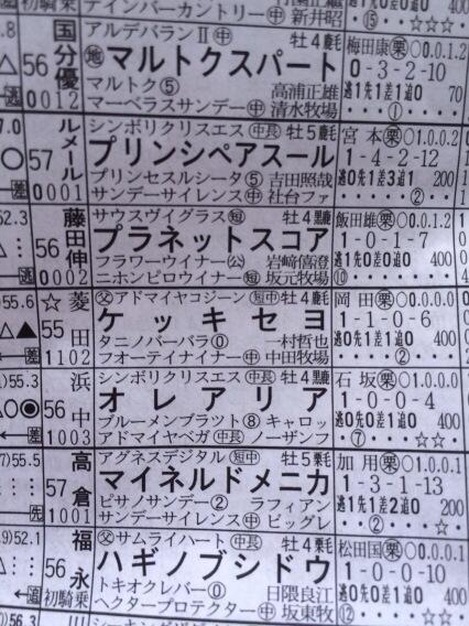 なんだこの政治思想ありそうな馬は。ケッキセヨ!!!! http://t.co/ls2zjZIyFu