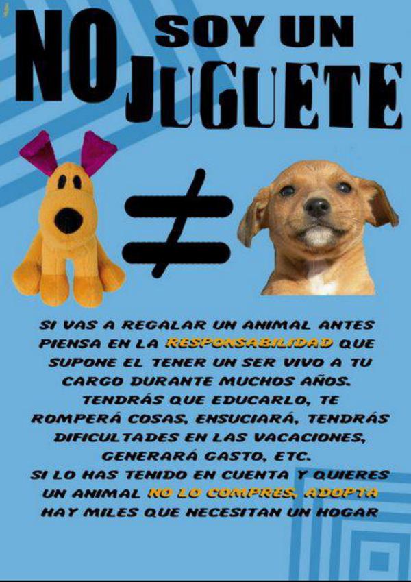 Natllely R. Zapata @Natlle | Klear