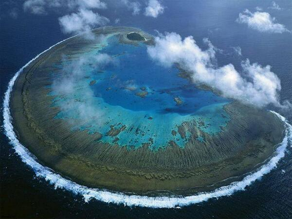 Lady Musgrave Island, Great Barrier Reef, Australia http://t.co/kGBFp2LhSA