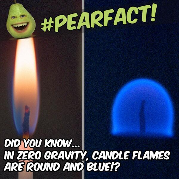 #PearFact Did you know that in zero gravity, candle flames are round and blue!? MYSTERY VIDEO: http://t.co/0t3pikzU3T http://t.co/WPMtmjcZsM