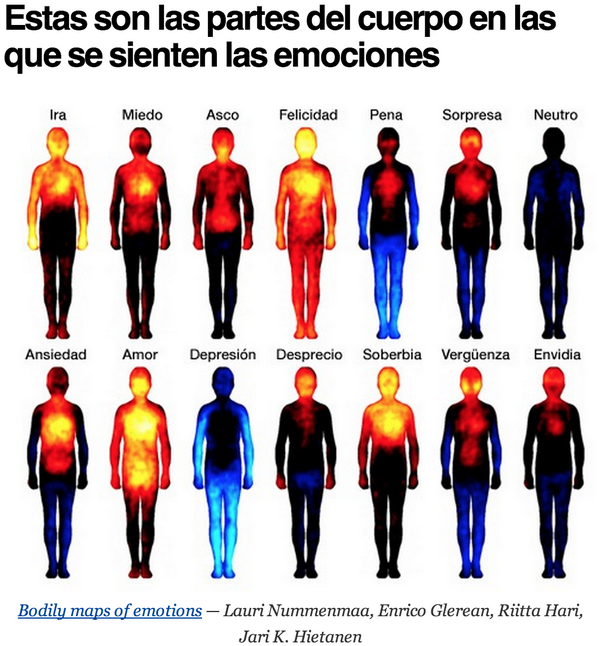 Estas son las partes del cuerpo en las que se sienten las emociones. #Interesante http://t.co/9eJZjQICfF