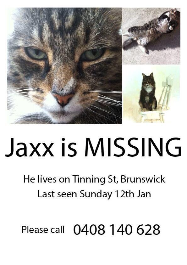 Has anyone seen jaxx? He's a big guy, but has been missing for a while! Please share http://t.co/Fq0JTwfpmH