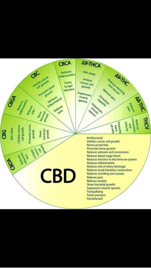 RT @WEEDnART: Ever Wonder Exactly How Marijuana is Medical? http://t.co/8x0jca0G0p