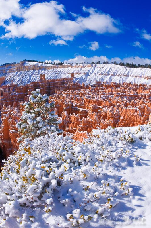 Fresh powder on the Silent City, Bryce Canyon NP, Utah Hi-res: http://t.co/CEDusAQVBL #winterwednesday #utah #bryce http://t.co/78xrPsOfQD