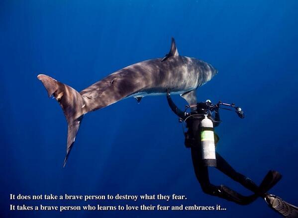 Fear... http://t.co/u7Op1iUGAe