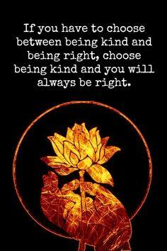 If you have to choose between being kind and being right, choose being kind and you'll always be right http://t.co/1G2pbxdVPI