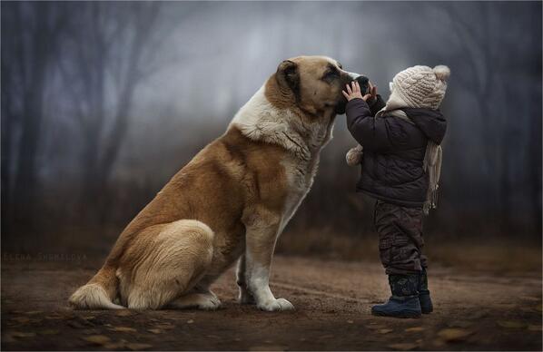 Una madre en Rusia hace fotografías mágicas de sus hijos con los animales de su granja http://t.co/WiUIp8DsL9 http://t.co/bfofMVnIg4