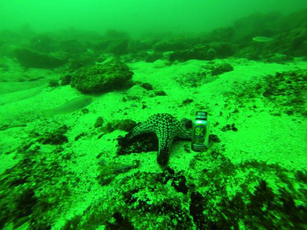 Under the sea with SK! #GoodTimes #GoodEnergy http://t.co/EHueniaT3B