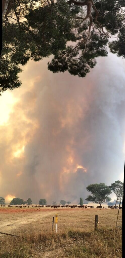 RT @siobhanheanue: Nowhere to go. Fire jumps from pine plantation to grazing land near Carabost #NSWfires @abcnews http://t.co/6ip7ggFA9u