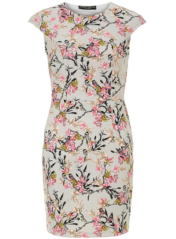 Dorothy Perkins (@Dorothy_Perkins): Our #TweetItWinIt pick would be this pretty Grey bird neoprene dress! RT to #win http://t.co/2HJORNqILa http://t.co/2HOaDDLeK0