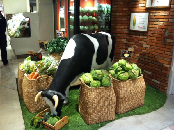 Oisix吉祥寺アトレ店オープンしました! 恵比寿、二子玉川に続いて3店舗目ですが、今までの4倍の規模で、野菜&ベジデリの業態にチャレンジします。 お近くの方も遠めの方も是非いらしてください! http://t.co/6DMJIG2zfg