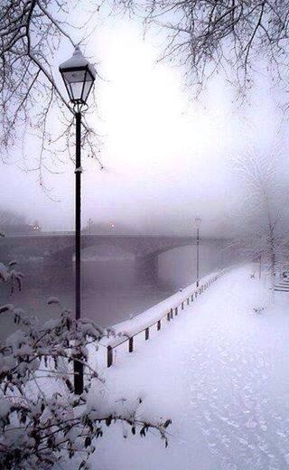 Paris in the winter is so beautiful http://t.co/Ww2khUlx9h